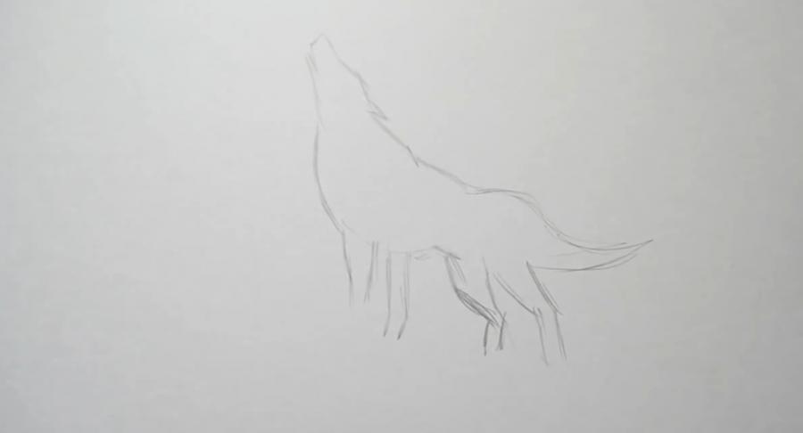 Рисуем татуировку волка - шаг 1
