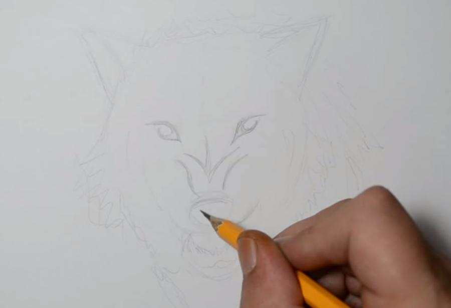 Рисуем татуировку злого волка шаг за шагом - шаг 2