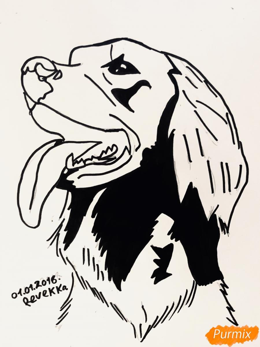 Рисуем собаку породы Сеттер в стиле тату - шаг 6