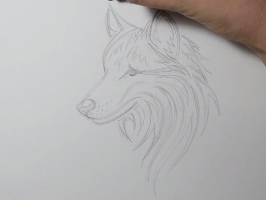 Учимся рисовать голову волка в стиле тату на бумаге - шаг 6