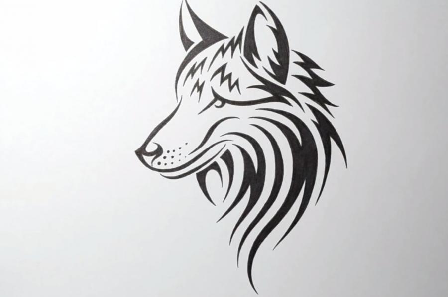 Учимся рисовать голову волка в стиле тату на бумаге - шаг 8