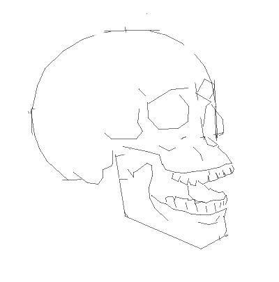 Рисуем череп человека - шаг 3