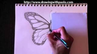 реалистичную бабочку видео урок